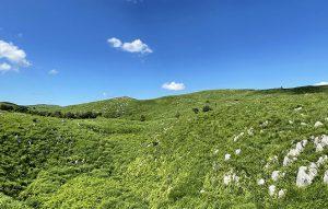 山口県の地質物語
